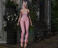 The Devil Wears Pink