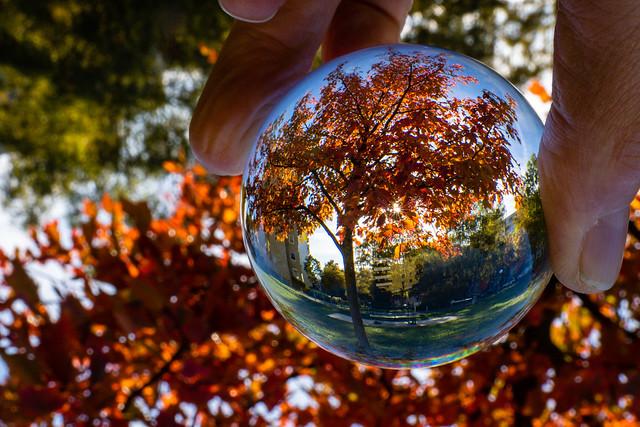 Herbstfarben mit Glaskugel