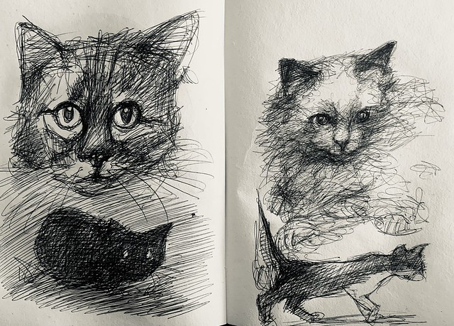 Cat doodles. Ballpoint pen only drawings by jmsw on recycled sketch book paper.