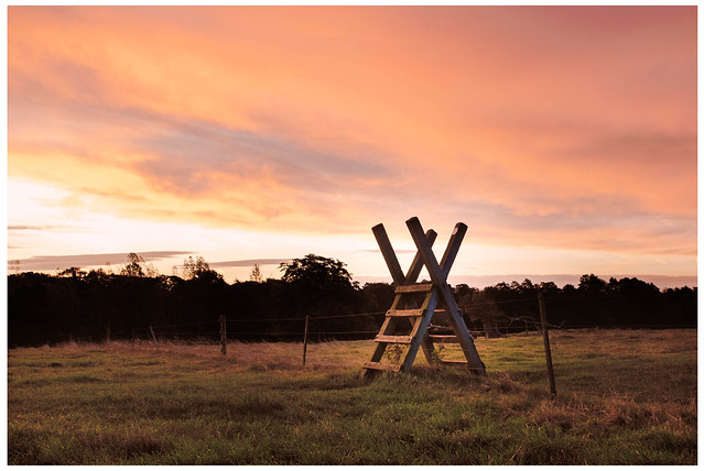 Fence Sunrise