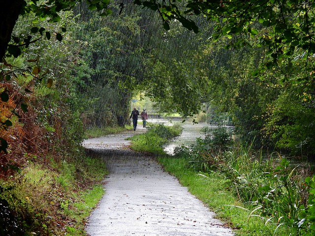 Rain, Monmouthshire-Brecon Canal, Five Locks, Pontnewydd, Cwmbran 25 October 2021