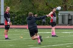Wheeling University Rugby