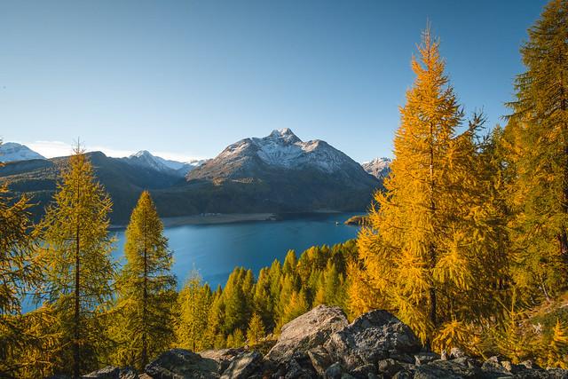 Autumn Lake - Lake Sils, Switzerland