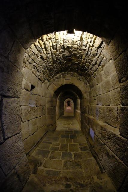 XE3F9624 - Tunel de San Virila – San Virila tunnel (Monasterio de Leyre, Navarra)