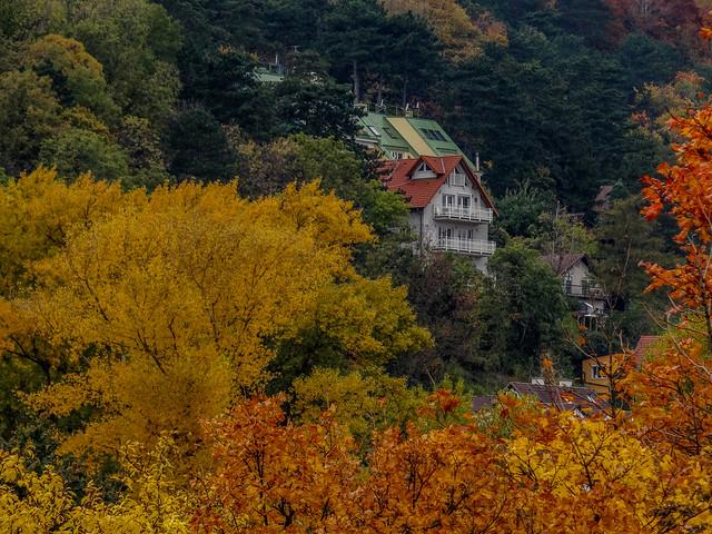 Colorful world of Autumn season.