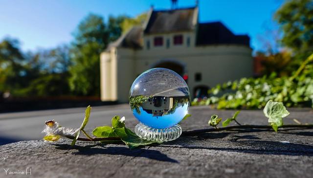 10293 - Boule de cristal