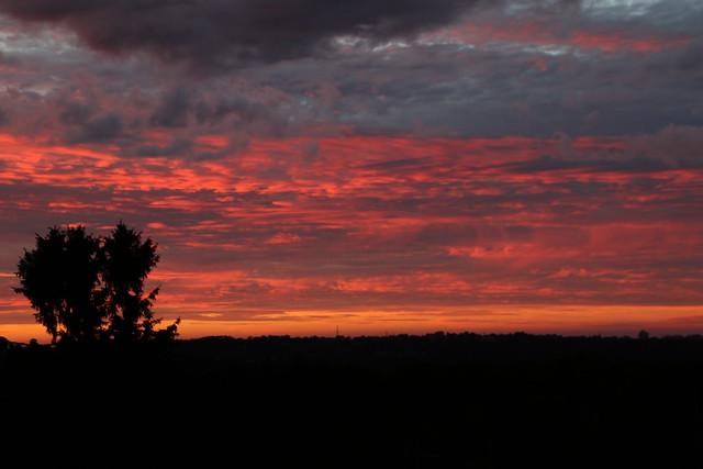Early summer dusk (III)