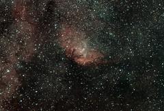 Tulip Nebula or LBN 168