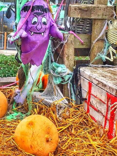 Into Halloween spirit