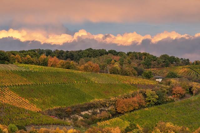 *Herbst im Ahrtal* - *Autumn in the Ahr Valley*