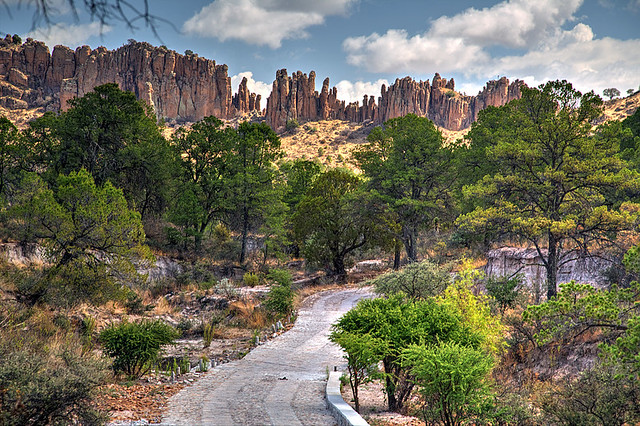 The Way to the Organ Pipes
