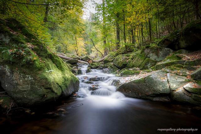 Wunderschöner Harz...