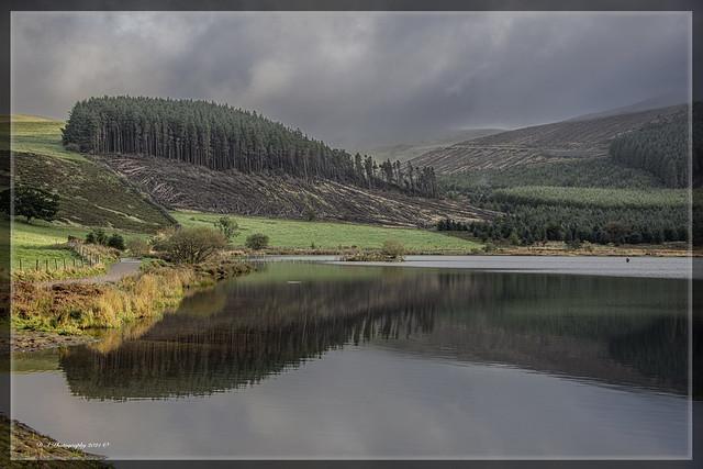 Cogra Moss Landscape Reflections DSC_4110