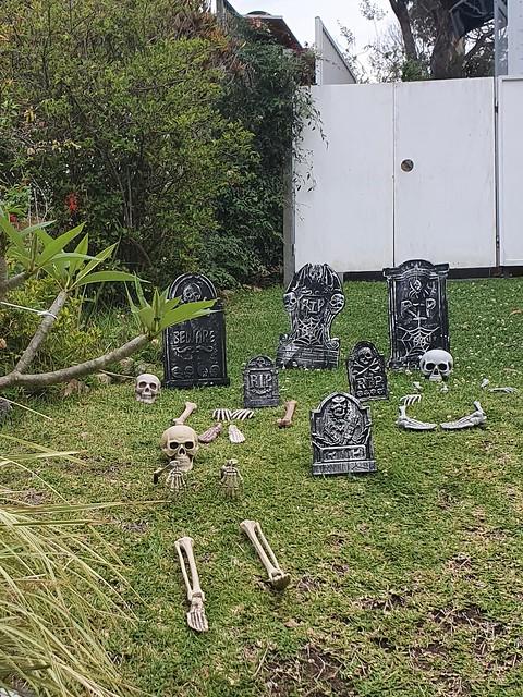 9714 Halloween is coming 20211025_165402 (2)