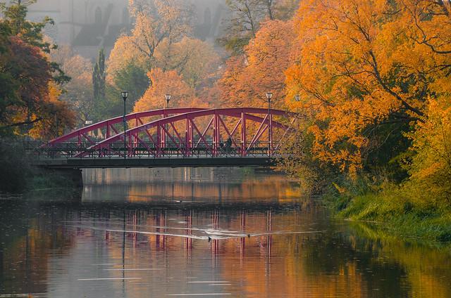 Deep Autumn...