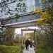 Highline Autumn