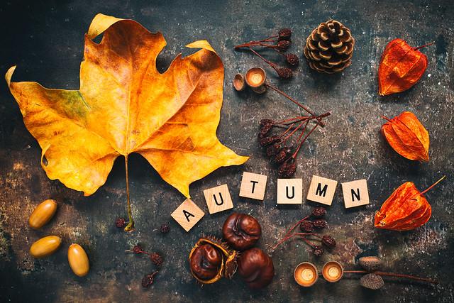 Autumn...The year's last loveliest smile...William Cullen Bryant