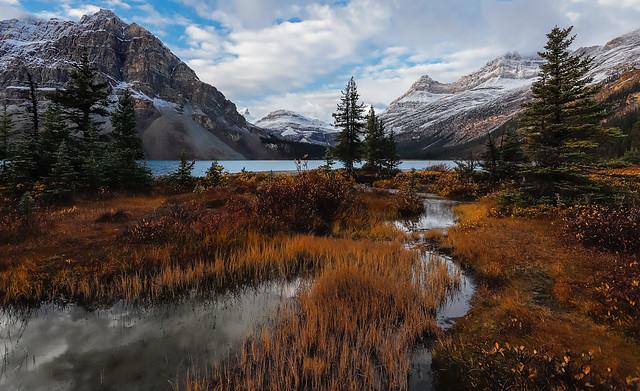 Bow lake autumn 2