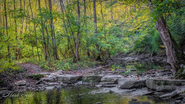 Autumn in Ohio 2