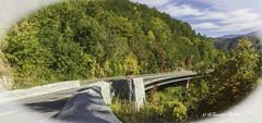 Missing Link Bridge