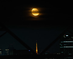 Moon playing hide-and-seek with Tokyo Tower