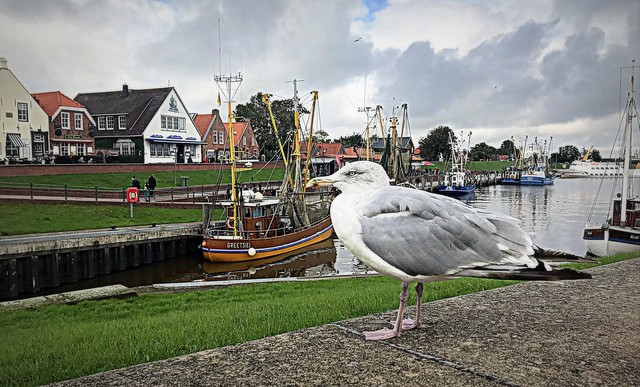 Greetsiel harbour
