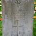 1903909 Corporal William Y Vaughan