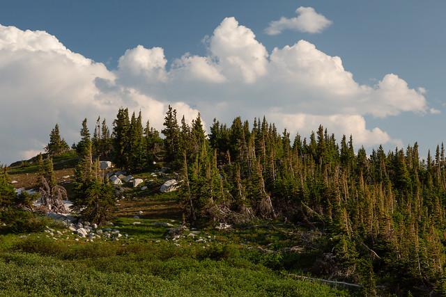 Snowy Range Highlands