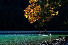 Green Waters, Orange Leaves