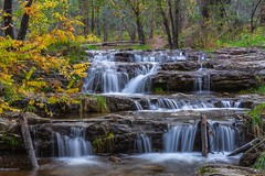 along the Horton Creek trail