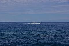 una barca da turismo di pesca passa vicino a costa