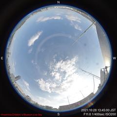 D-2021-10-28-1345_f
