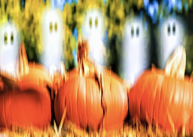Spooks in the Pumpkin Patch