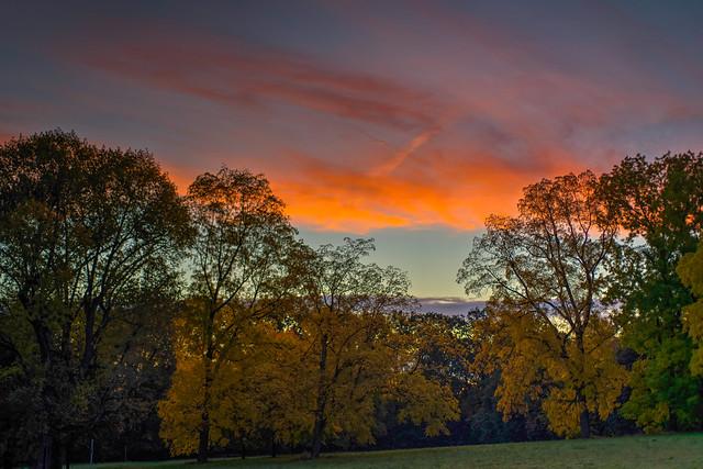 an autumn day before sunrise at Huthpark, Frankfurt