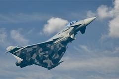 Eurofighter camuflat