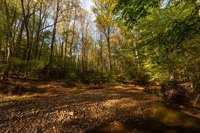 Maryland in Autumn