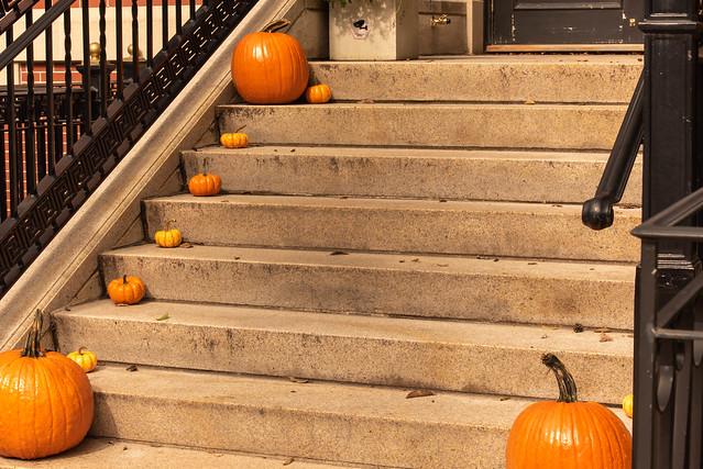 Boston Halloween Steps