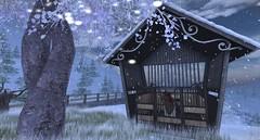 Winter Duskrest