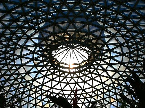 Inside the Tropical Dome