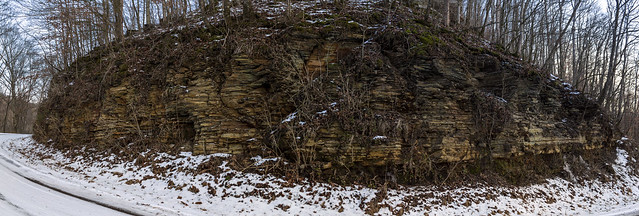 Chattanooga Shale Outcrop, Cab Anderson Rd, Jackson Co, TN
