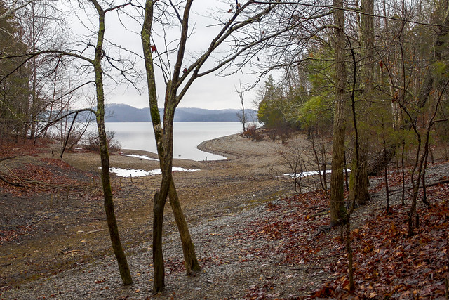 Dale Hollow Lake, Accordian Bluff Trail, Willow Grove Recreational Area, Clay County, TN