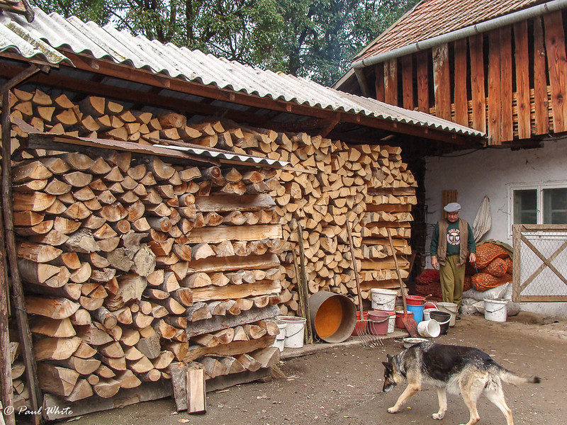 Wood store ready for winter