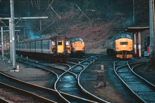 309606, Unknown Class 37 & 37219 on Ipswich Stabling Point