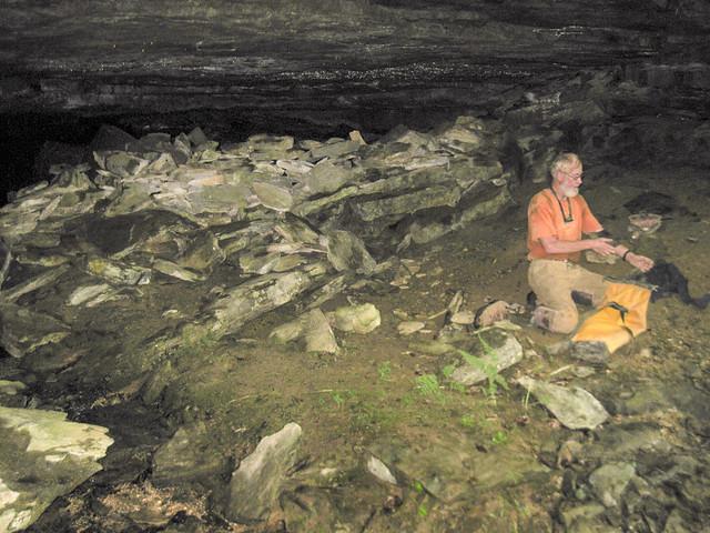 Shiner's Wall Cave 2, Marion O. Smith, Dekalb Co, TN