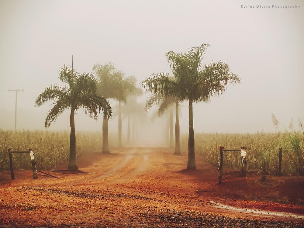 niebla - Amambay
