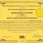 """AngelGirls Tica Outstanding Cattery"" Certificate"