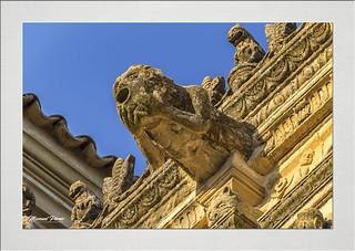 Gárgola Casa De Las Torres úbeda Jaén Dawn Mist Flickr