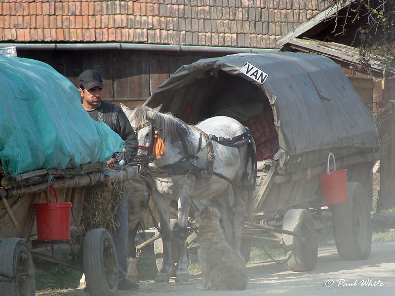 Roma caravan from Neamț