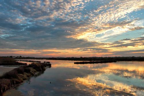 riadeaveiro sunset pordosol aveiro portugal europe