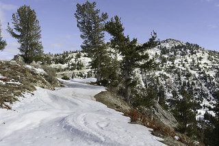 Road slalom